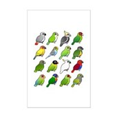 16 Birdorable Parrots Mini Poster Print