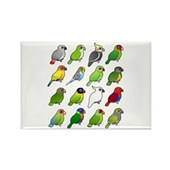 16 Birdorable Parrots Rectangle Magnet
