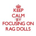 Keep Calm by focusing on Rag Dolls T-Shirt