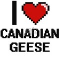 I love Canadian Geese Digital Design T-Shirt
