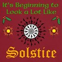 Looks A Lot Like Solstice T-Shirt