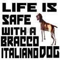 Life Is Safe With A Bracco Italiano White T-Shirt