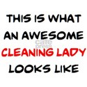 awesome cleaning lad Women's Classic White T-Shirt