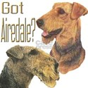 'Got Airedale?' Women's T-Shirt